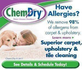 professional carpet cleaning near Crawley, West Sussex