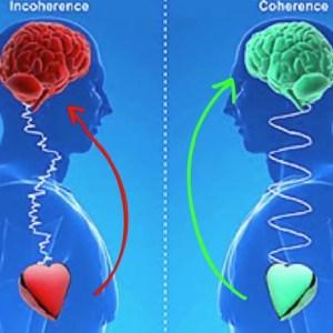Séances de Coherence Therapy