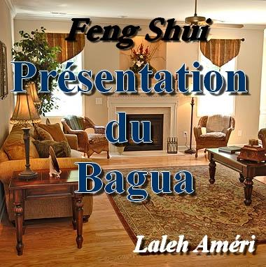 Présentation du Bagua
