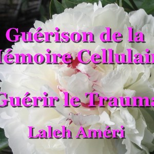 CD Guérir le Trauma