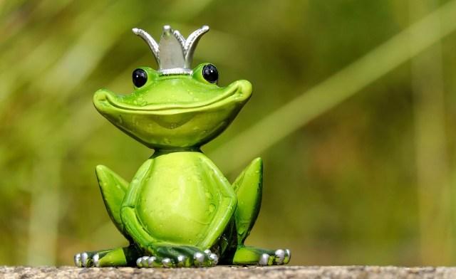 Une grenouille dans vos rêves ? 1