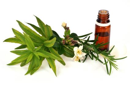 Huile essentielle et plantes aromatiques