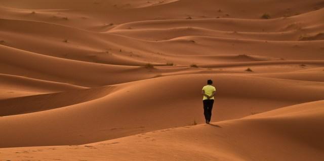 L'expédition dans le désert 1