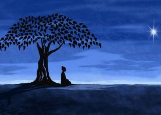 Méditer sur la nuit 13
