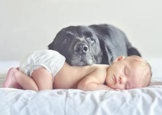 L'influence méconnue de l'environnement sur le sommeil du bébé 1