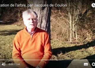 Méditation de l'arbre, par Jacques de Coulon 15
