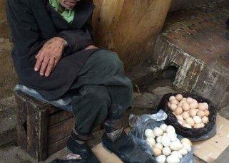 Le vendeur d'oeufs 24