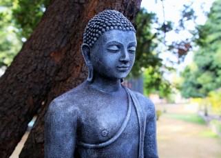 Quand Bouddha se fait insulter 1