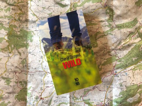 Wild : marcher pour se retrouver