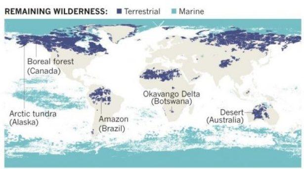 Déclin biodiversité terres sauvages