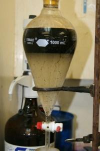 Water Cut Analysis