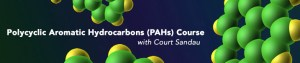 Polycyclic Aromatic Hydrocarbons (PAHs) Course with Court Sandau
