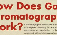 The Workings Of Gas Chromatography [Infographic]