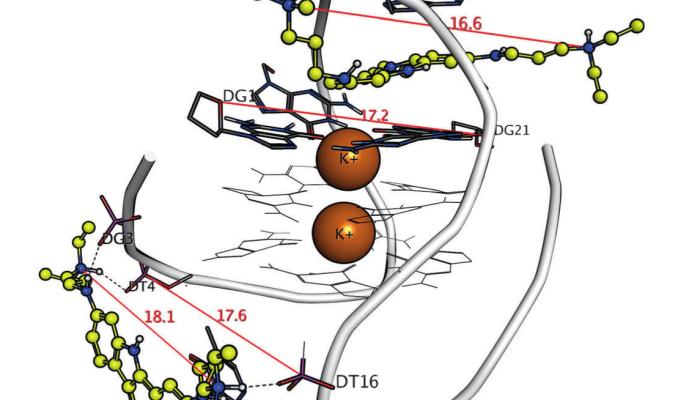 Indolo[3,2-c]quinoline Binders to Human Telomeric G-Quadruplex