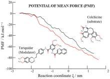 Access P-Glycoprotein Drug-Binding Pocket through Gates