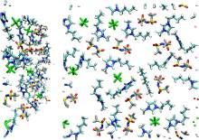 Effect of replacing [NTf2] by [PF6] anion on the [BMIm][NTf2] ionic liquid confined by gold