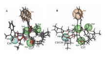 Colon Adenocarcinoma Multidrug Resistance Reverted by Euphorbia Diterpenes
