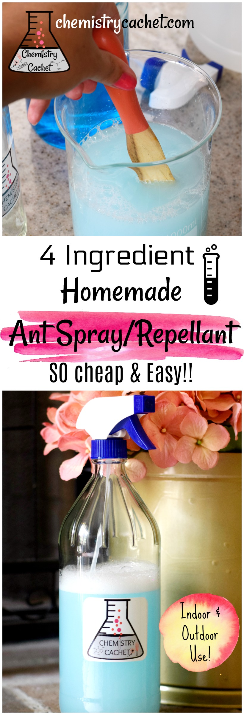 4 Ingredient homemade ant spray DIY ant repellant so cheap and easy to make! Good for indooroutdoor use on chemistrycachet.com