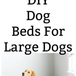 Diy Dog Beds For Large Dogs Chemistry Cachet