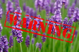 lavender warning