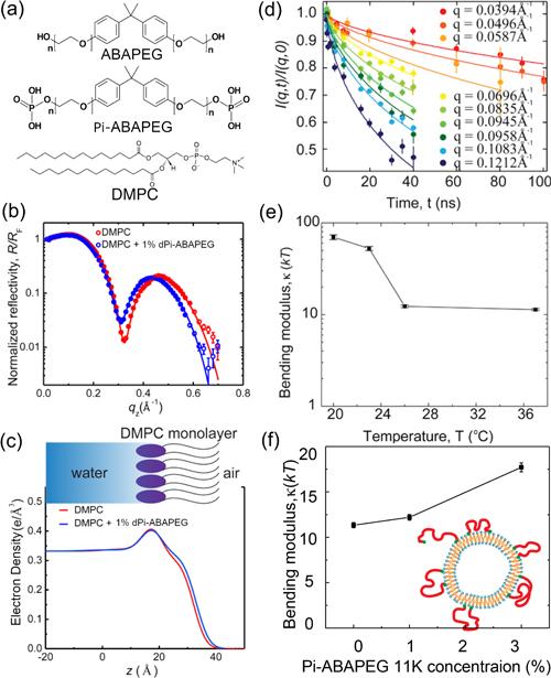 Making Better Drugs by Controlling Membrane Mechanics