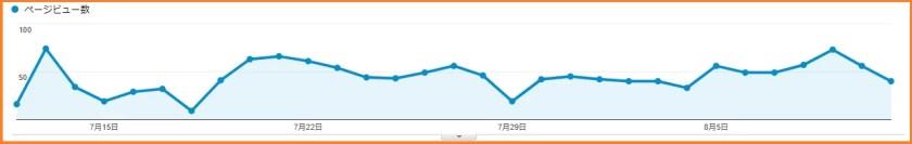 ブログ開始5ヶ月目のPV数