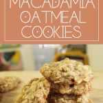 Coconut Macadamia Oatmeal Cookies with White Chocolate Chunks | Chenée Today