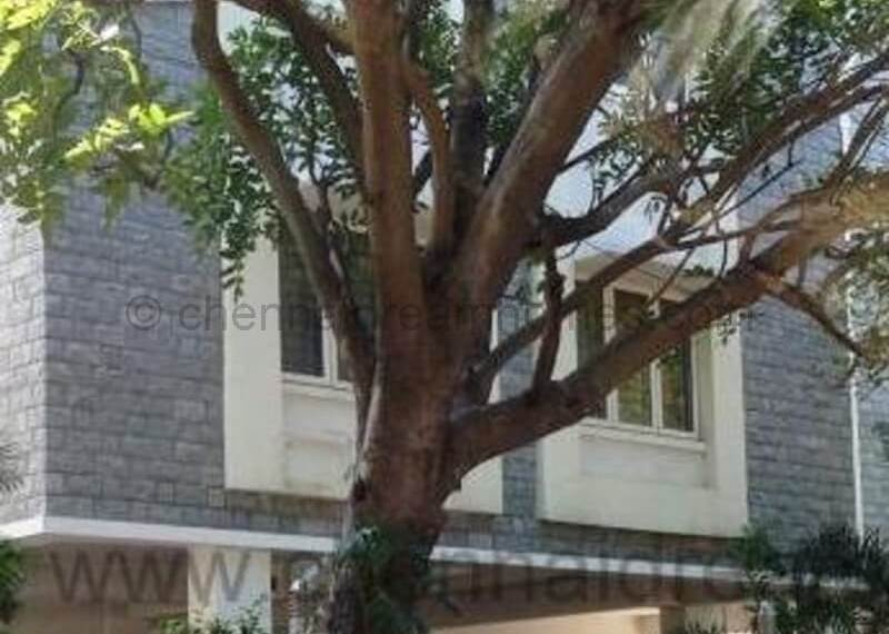 house for rent in besant nagar
