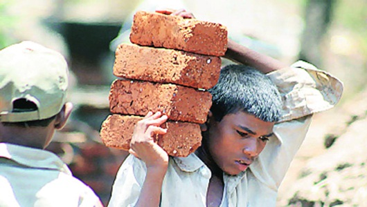 Number of child labourers down in TN: Minister