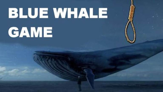 Talk to Russia, block Blue Whale: HC to govt