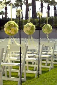 raw of carnations balls as a wedding aisle decor