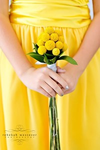 lemon zest 10