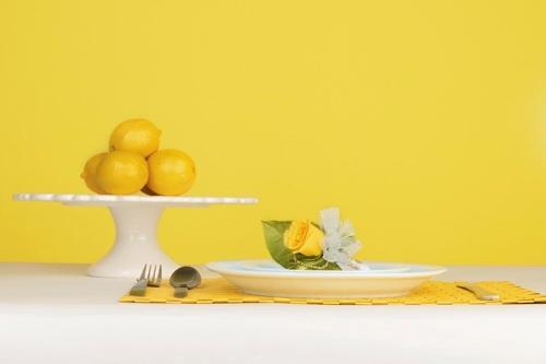 lemon zest 11