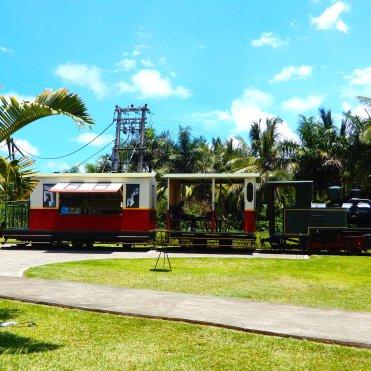 L_Aventure du Sucre(Sugar Adventure) Sugar Factory Pamplemousse Mauritius DSCN9481
