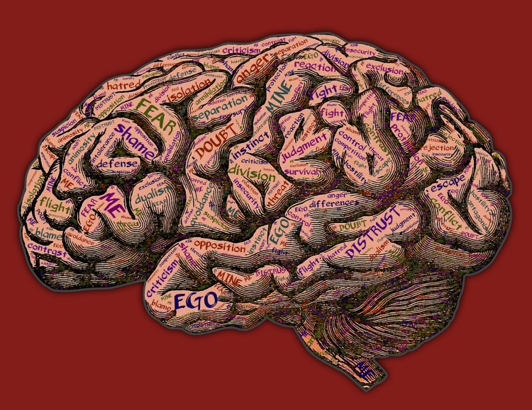 The mind baggage in the human brain