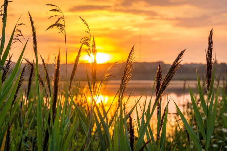 sunrise-1670979_1920