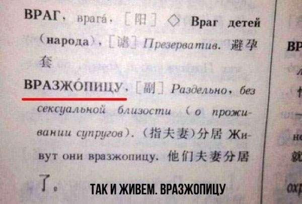 Правила и особенности Русского языка в весёлых картинках