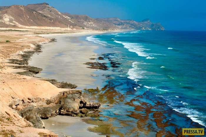 Загадочный и притягательный Оман (12 фото)