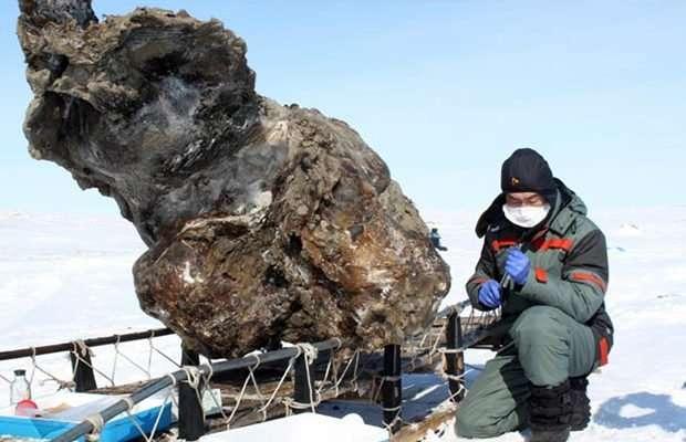 Ужасные находки, обнаруженные в растаявших льдах (13 фото)