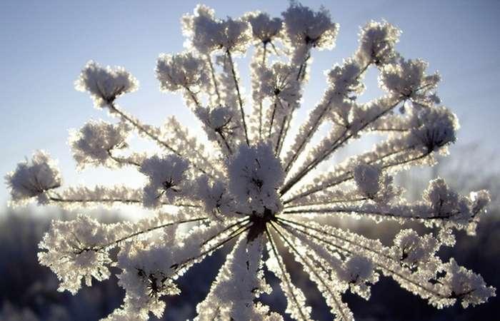 10 редких природных зимних явлений, не увидев которые своими глазами, можно усомниться в их реальности