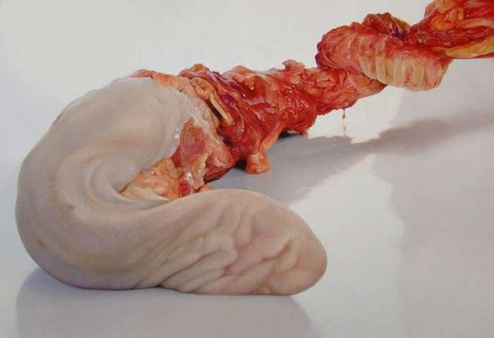 Мясные арт-фантазии по которым психушка плачет-33 фото-