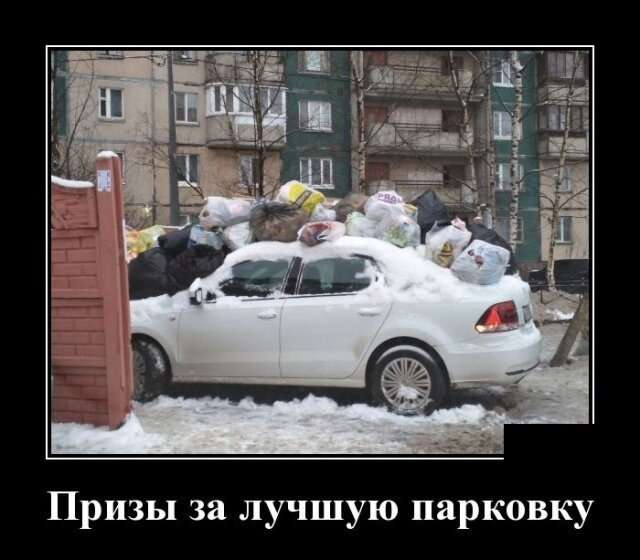 Демотиваторы от Водяной за 24 января 2019-18 фото-