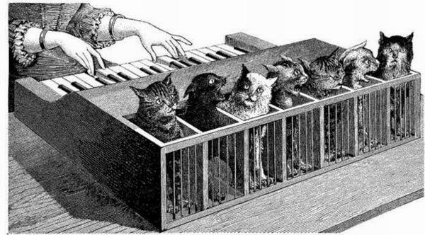 Кто играл на кошачьем клавесине