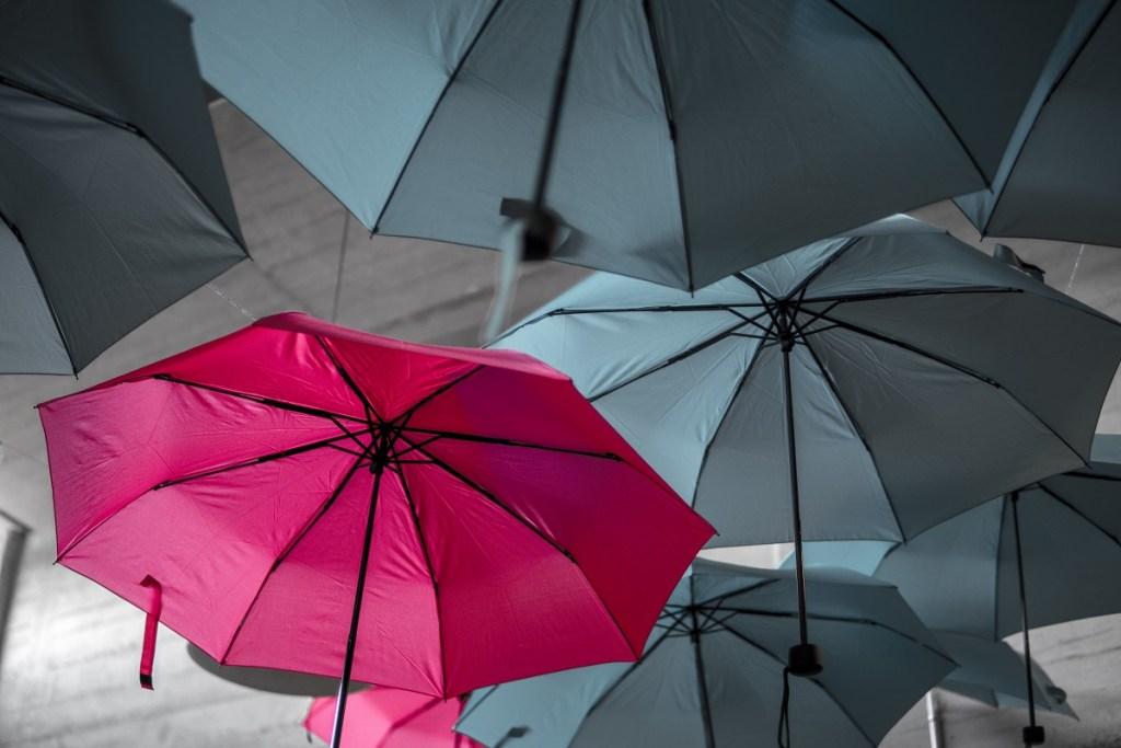 umbrellas, one pink