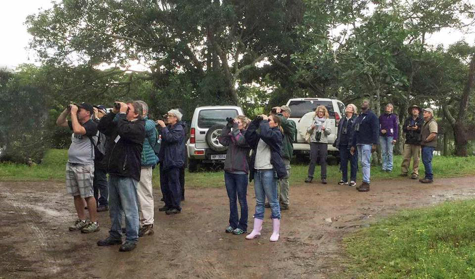 Group of birdwatchers in Ongoye Forest near Mtunzini