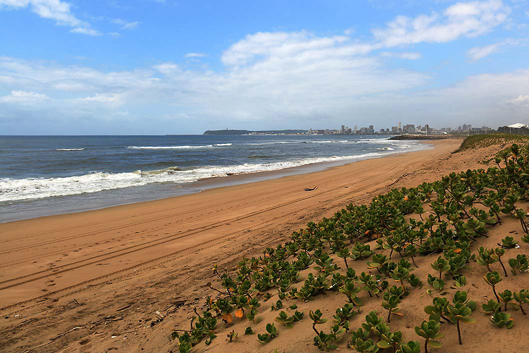View of Durban from the Beach