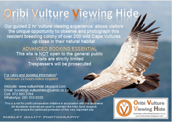 Vulture Viewing Hide advert