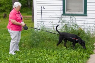 Fleurette does not have a particular goal in mind for each visit. She assesses the needs of the patient and family members on the fly when she arrives and is willing to do whatever she can to help out, such as taking the dog for a walk outside.