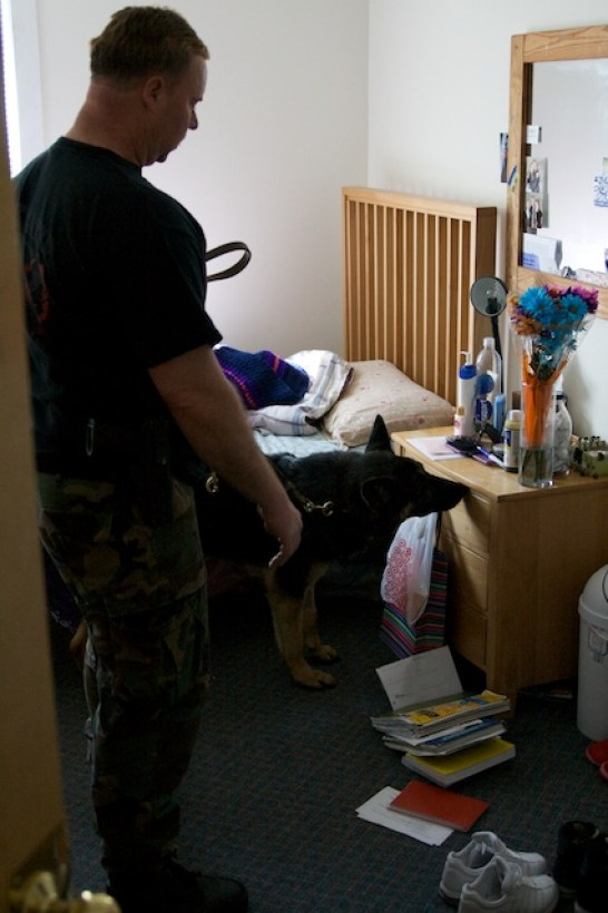 Kevin and Baron regularly conduct random drug searches at several treatment facilities for youth, as well as local middle and high schools. At Youth Alternatives Heritage House in South Portland, Baron takes less than 5 minutes to clear the four residents' bedrooms and reassure staff no illegal drugs are hidden there.