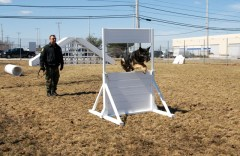 Baron is certified in both Narcotics Detection and Patrol, which includes evidence and building searches, tracking, and criminal apprehension. In order to be certified by the Maine Criminal Justice Academy, 8 hours of training time per month for each certification category are mandatory, and K-9 teams must be re-certified every 6 months.